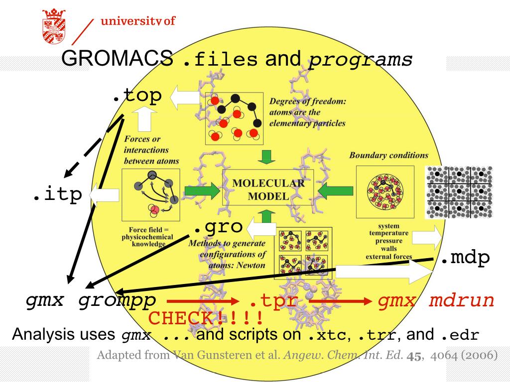 Molecular Dynamics Group